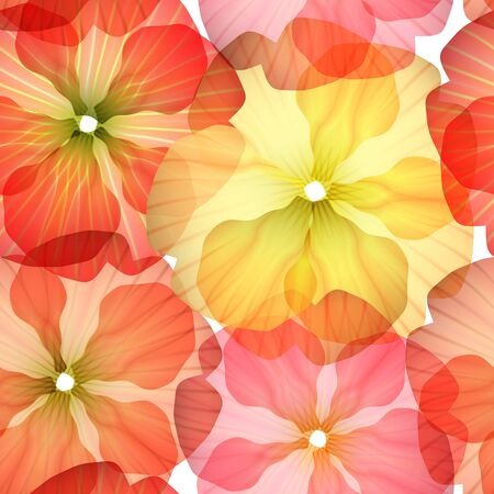 primula: Bright Seamless floral background isolated on white  Illustration