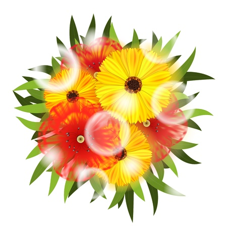 Bouquet of Flowers isolated on white Stock Vector - 17092595