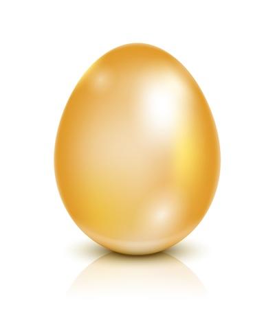 Illustration Golden egg isolated on white Stock Vector - 17750989