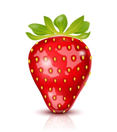 Realistic juicy Strawberry isolated on white Stock Vector - 17751016