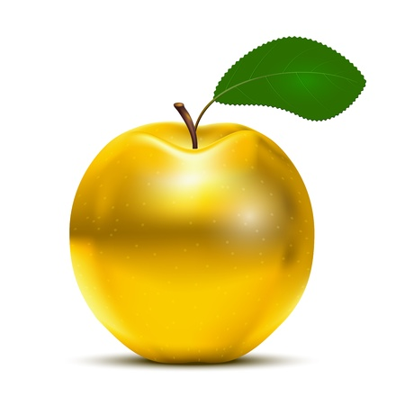 gold treasure: Vector Golden Apple with green leaf isolated on white background