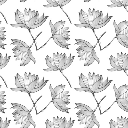 Lotus Flowers Seamless Pattern Background Black and White Stock Vector - 18844830