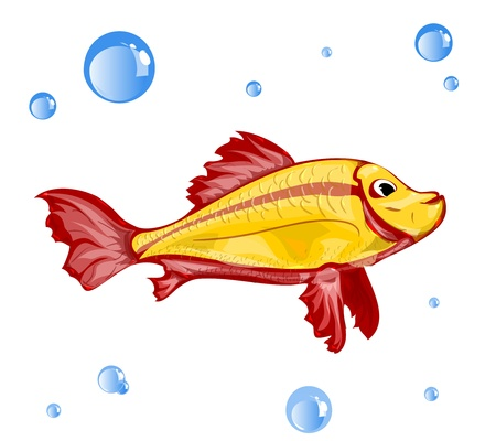 Vector Fish and bubbles isolated on white background Stock Vector - 19374232