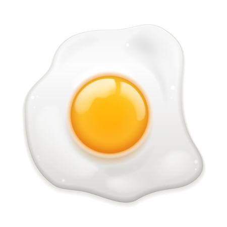 Vector Fried Egg isolé sur fond blanc