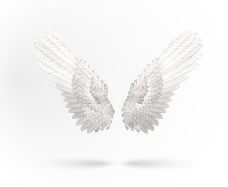 flapping:  White Angel wings isolated on white background