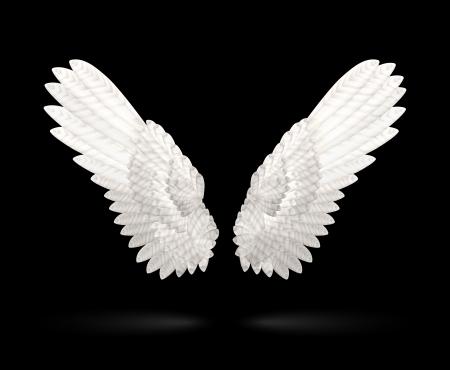 ali di angelo: Realistica vettore ali bianche su sfondo nero