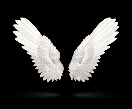 spread wings: Vector Realistic White Wings on black background