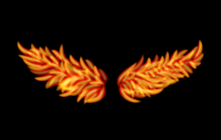 Vector Flame Wings isolated on black background Vector
