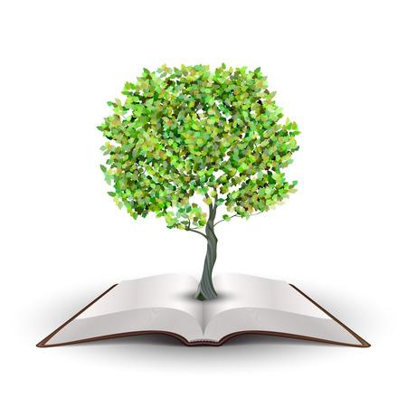 arbol de la sabiduria: �rbol que crece del libro abierto Vector aislado en blanco