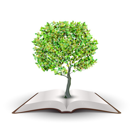 white book: Tree growing from open book Vector isolated on white