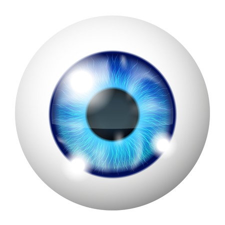 Vector Blue human eye macro over white Stock Vector - 25252140