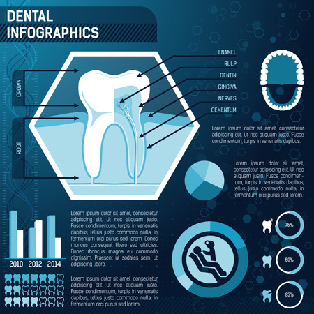 dental hygienist: Tooth anatomy, health and prevention template for design infographic Illustration