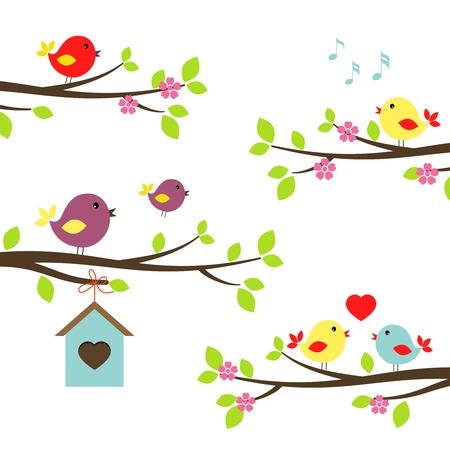 Set of colorful birds on flowering branches in a spring garden tweeting  singinging  in love and teaching a fledgling to fly above a nesting box  vector illustration on white Vector
