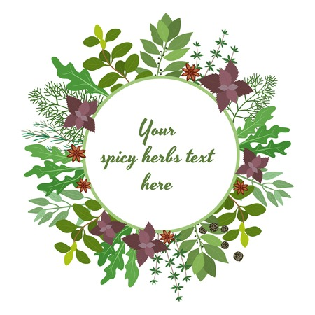 Vector illustration of fresh cooking herbs in a circular frame with oregano  parsley  basil  rosemary  rocket  sage  bay and thyme leaves around central copyspace for your text on white Illustration