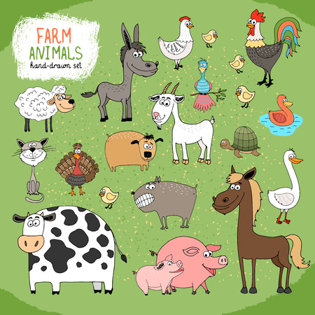 Set of hand-drawn farm animals and livestock with a black and white cow  horse  donkey  sheep  pig  piglet  goose  duck  rooster  hen with chicks  guard dog  cat  goat and tortoise Vector