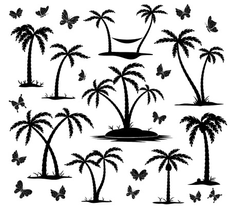 vector silhouettes of palm trees and butterflies on white background Vector