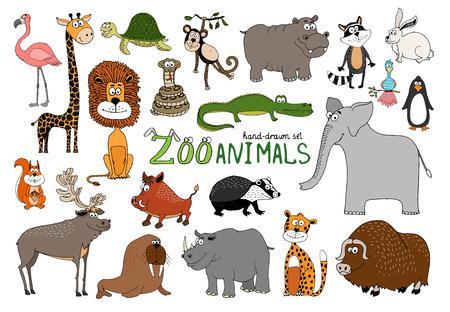 badger: Set of hand-drawn zoo animals on white with a flamingo  lion  rhino  elephant  raccoon  bison  squirrel  reindeer  walrus  beaver  warthog  crocodile  hippo  penguin  snake  turtle  monkey and giraffe