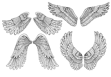 Set of four different vector angel wings in black and white outline in the open position for tattoo and use as design elements Illustration
