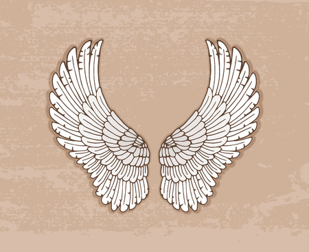 outspread: Pair of graceful open white wings in vintage style  Illustration