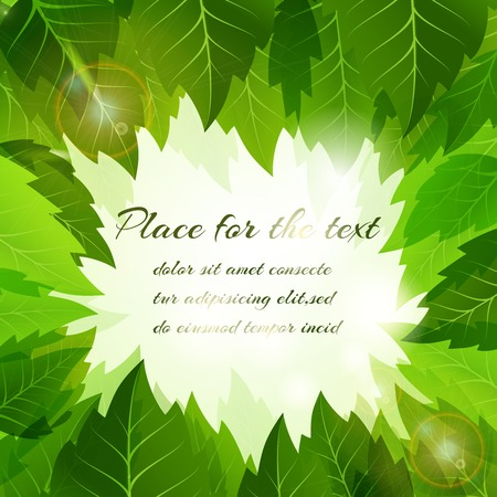 surrounding: Summer background with a frame of fresh green leaves surrounding a central copyspace for your text in square format for an eco  bio or organic concept  vector illustration