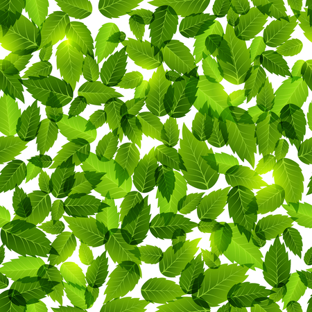 verdant: Green leaves seamless background pattern filling the whole frame with fresh green spring foliage for natural or eco designs  square format vector illustration Illustration