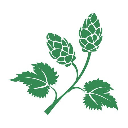 Green vector silhouette hops icon with leaves and cone like flowers used in the brewing industry to add the bitter taste to beer