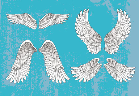 Set of four pairs of hand-drawn white wings in the open extended position with feather detail on a blue background