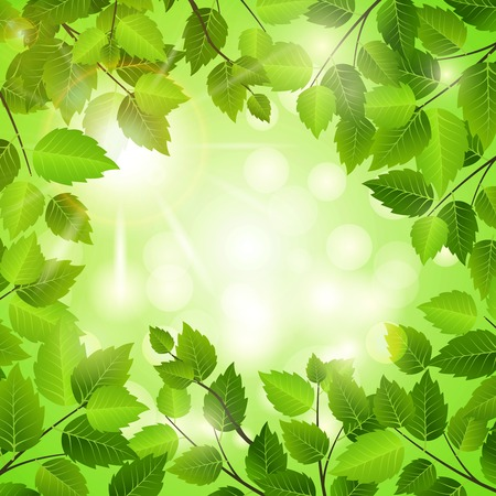 verdant: Spring frame of green leaves