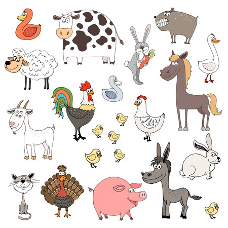 barnyard: farm animals