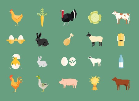 gallina con huevos: Colorido conjunto de animales de granja y productos Vectores