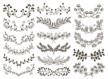 laurel branch: hand drawn floral