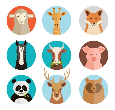 cartoon sheep: Animals avatars