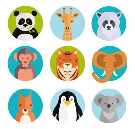 squirrel monkey: Cute animals in colored round badges