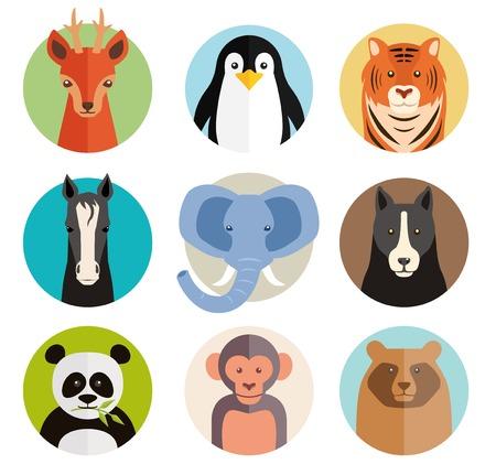 pinguino caricatura: Conjunto de iconos de animales de vectores en los botones redondos Vectores