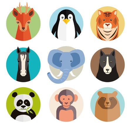 pet  animal: Set of vector animal icons in round buttons