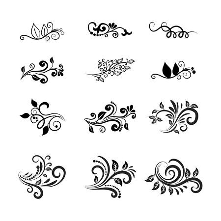 Vector Calligraphic Floral Design Elements