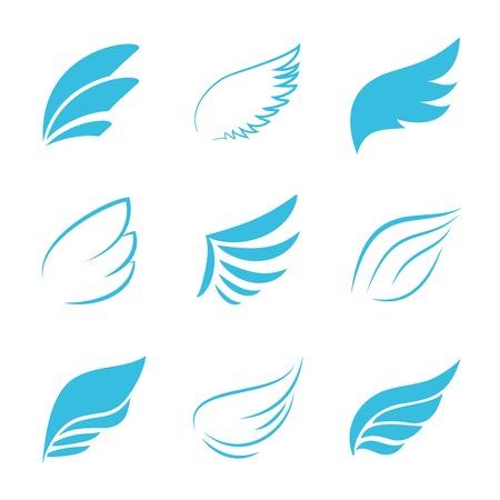 Variety Blue Wings op een witte achtergrond