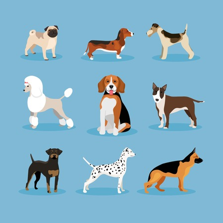 business people walking: Dogs set Illustration