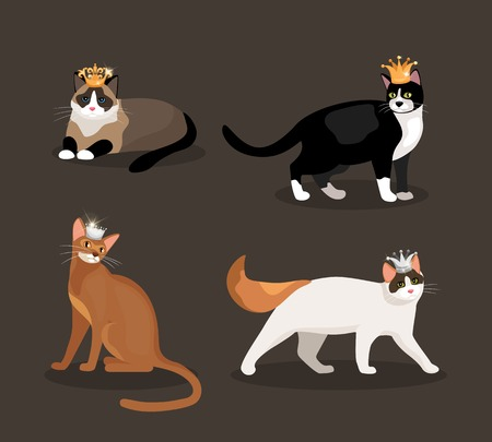 crown tail: Set of four cats wearing crowns Illustration