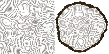 rings on a tree: tree rings Illustration