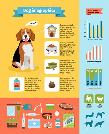 Dog infographics Vector