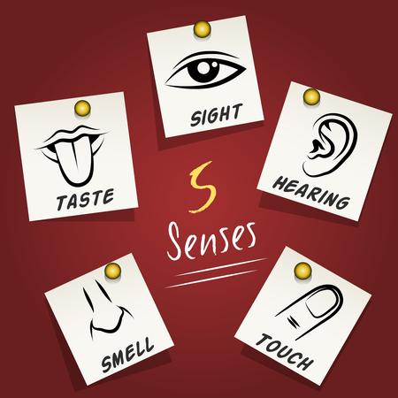 Conjunto de iconos de los sentidos en notas adhesivas