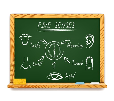 senses: The Five Senses