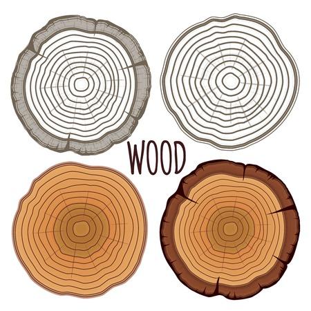 circulos concentricos: Anillos de los árboles Vector