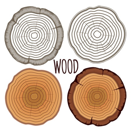concentric circles: Vector tree rings Illustration