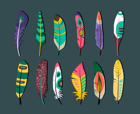 Attractive Feathers Icon Set Designs Illustration