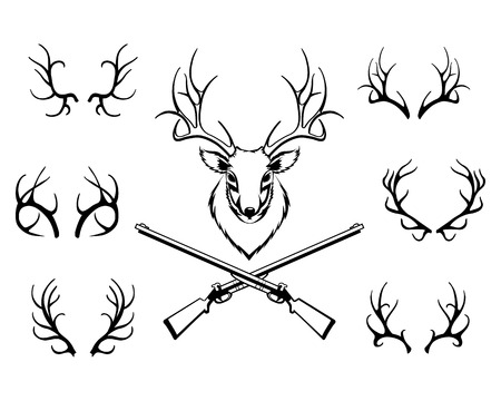 marksmanship: Set of antlers with a trophy and guns