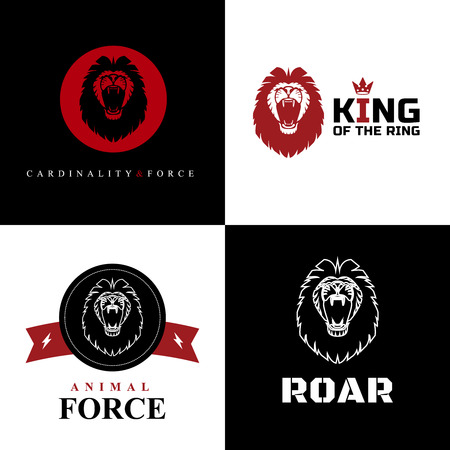 Lion Logo Graphic Designs Vector