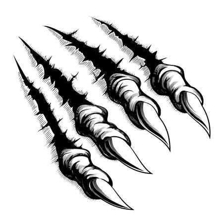 Monster claws break through white background Vector