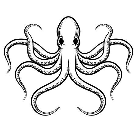 Vector ilustración de pulpo Vectores